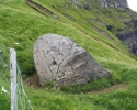 steinurin n. undir horni (Medium).jpg